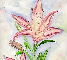 Lilies of the Field by Anne Gitto