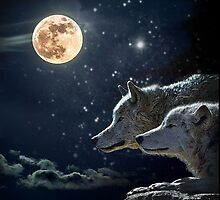Wolves in the Moonlight by Edmond  Hogge