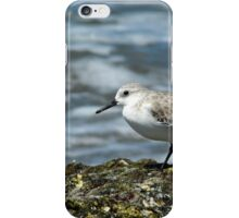 Shorebird iPhone Case/Skin