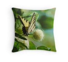 070210-2 Throw Pillow