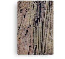 Climbers on Devils Tower Canvas Print