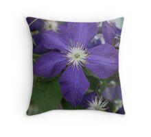 The Illusive Vine Throw Pillow