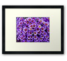 Purple wall Flowers Framed Print