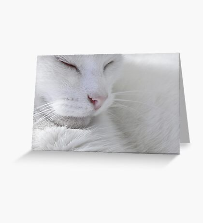 Sleep Greeting Card
