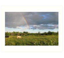 Rainbow Pasture Art Print
