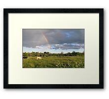 Rainbow Pasture Framed Print