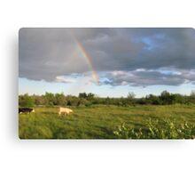 Rainbow Pasture Canvas Print