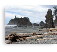 Ruby Beach - Oympic Peninsula Washington Canvas Print