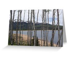 Twin Lakes through the Aspens Greeting Card