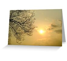 Watching the silky sunset Greeting Card