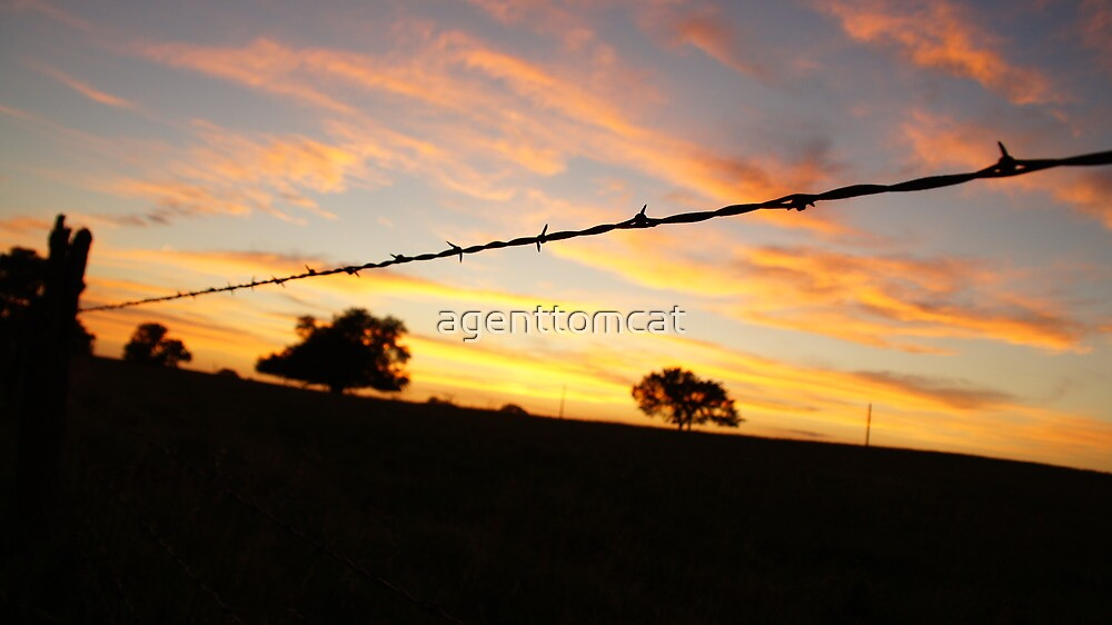 Barbed wire silhouette askew by agenttomcat