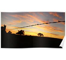 Barbed wire silhouette askew Poster