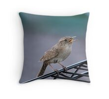 Oh Baby! Throw Pillow