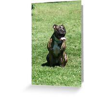 Can somebody turn on the air conditioning! Greeting Card