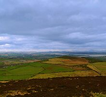 4000 Years of  Peat Land - Donegal by Ferdinand Lucino