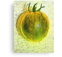 green zebra Canvas Print