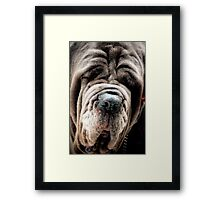 I have a wrinkle or two! Framed Print