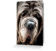 I have a wrinkle or two! Greeting Card