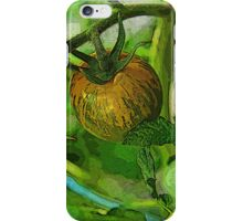 tomato vine iPhone Case/Skin