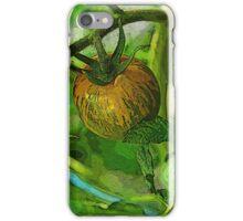 tomato vine iPhone Case/Skin