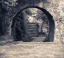 arch by Andrew Bradsworth