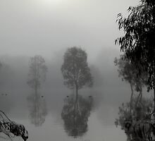 Hattah-Kulkyne NP foggy morning by mosaicavenues