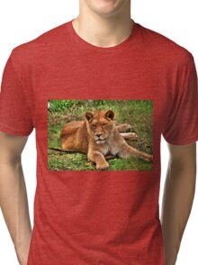 The Lioness Tri-blend T-Shirt