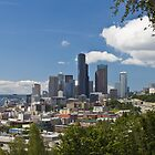 Downtown Seattle from Jose Rizal Park by Barb White