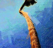 San Clemente Beach Palm by Ron Regalado