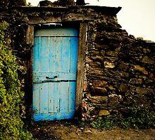 BLUE DOOR- Cinque Terre, Italy by Andrianne