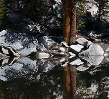 Unnamed lake after snowmelt - Sierras by David Galson