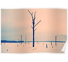 Winter at Manasquan Reservoir - 2 Poster