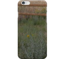 Meadow Fence iPhone Case/Skin