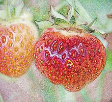 Strawberries by Jonice