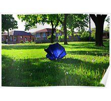 Blue Umbrella-North York Ontario Poster