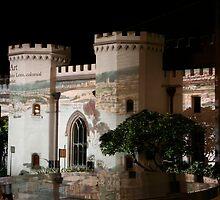 Sydney Conservatorium of Music, Australia by Deb22