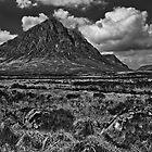 Buachaille Etive Mor  by Shaun Whiteman