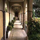 Little Walkway by Warren. A. Williams