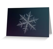 Neon, snowflake macro photo Greeting Card