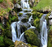 Glen Clova waterfall by Ellis Lawrence