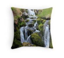 Glen Clova waterfall Throw Pillow