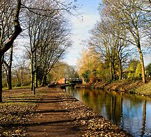 The Cauldon In November by David J Knight