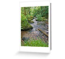 Shaugh Bridge Devon   Greeting Card