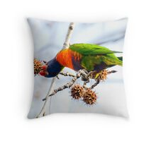 Rainbow lunch 3 Throw Pillow
