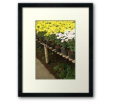 flower plantation Framed Print
