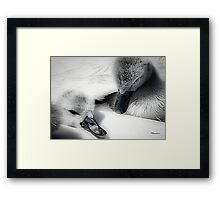 Wrapped In Swans Down Framed Print