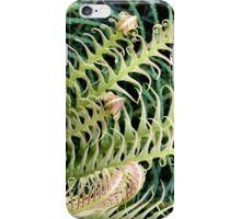 New Curlings of a Fern iPhone Case/Skin