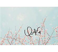 Swift's signature (flowers) Photographic Print
