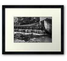 Situated In Shade Framed Print