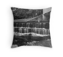 Situated In Shade Throw Pillow